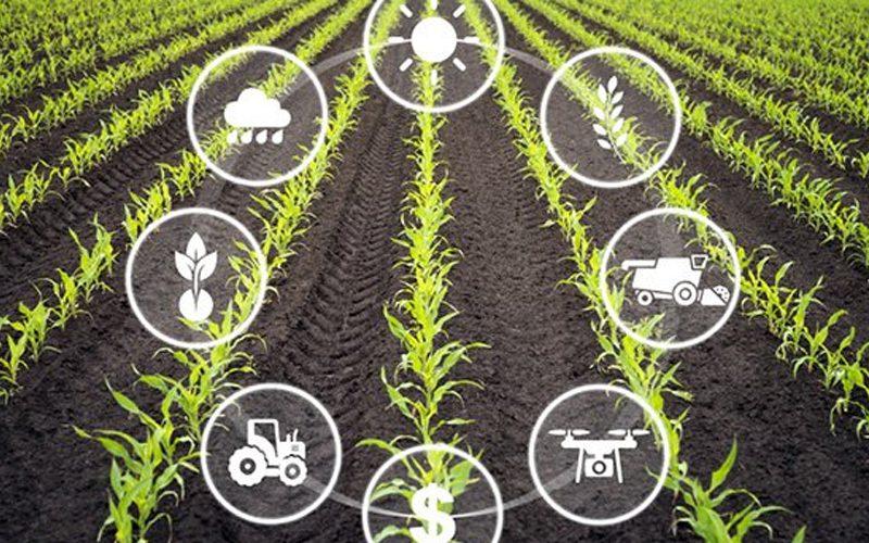 iot ngành nông nghiệp
